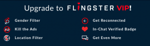 Flingster Features