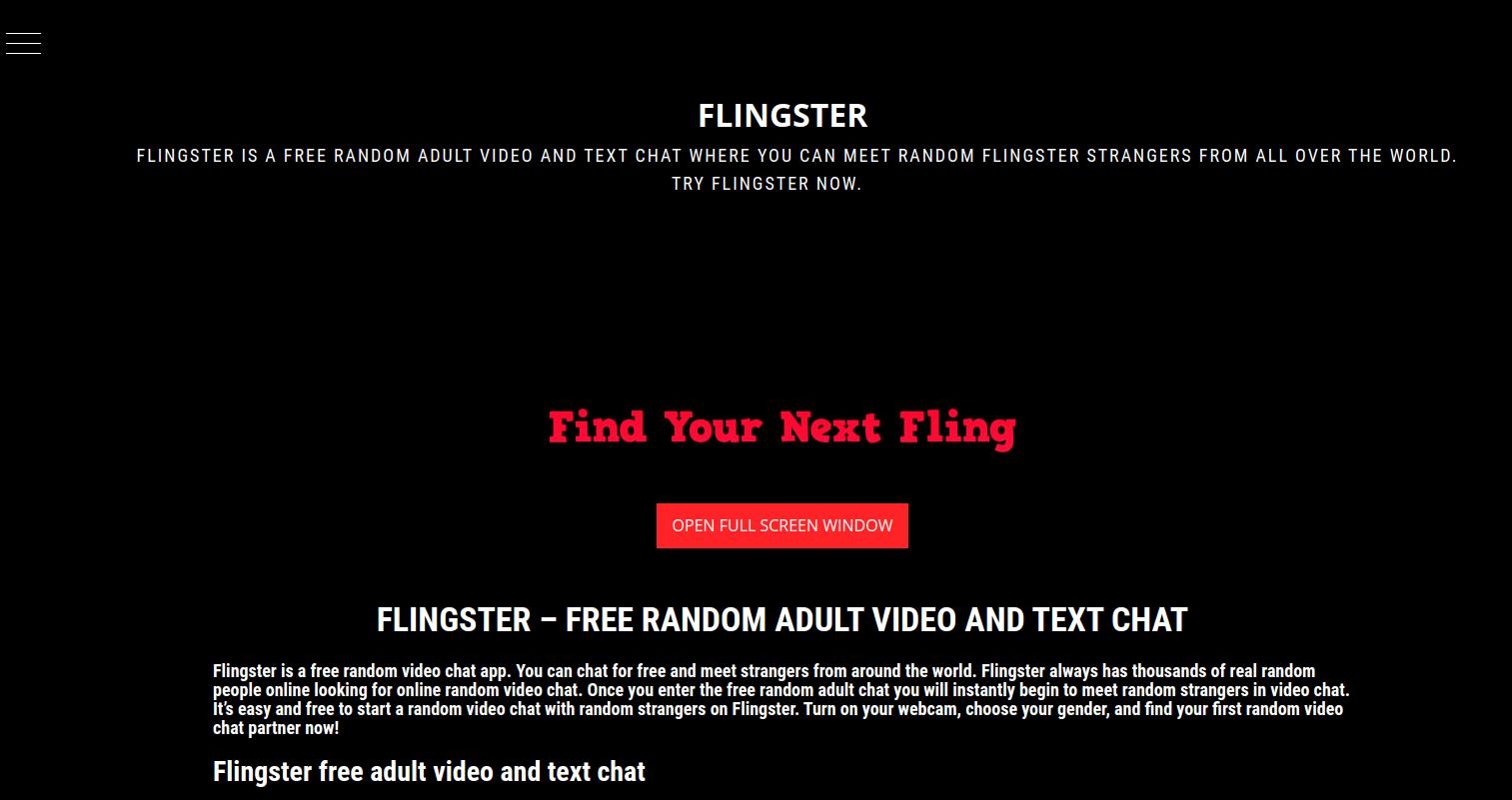 Flingster Home Page Screenshot