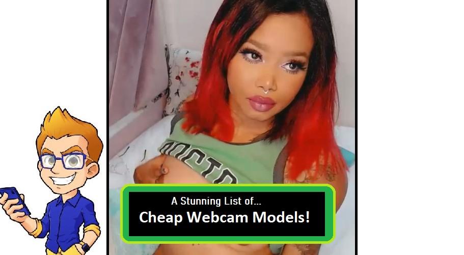 cheap webcam models